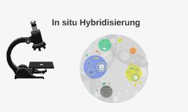 In situ Hybridisierung