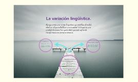 La variación lingüística.