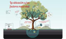 COMPORTAMIENTO DE LA MADERA EN LA EDIFICACIÓN