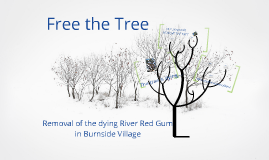Copy of Copy of Copy of Free the Tree
