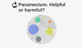 Paramecium. Helpful or harmful?