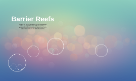 What is a Barrier Reef?