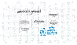 Programa Mundial de Alimentos ( PMA )