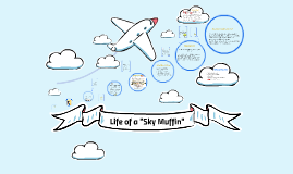 """Life of a """"Sky Muffin"""""""