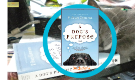 a dogs purpose book report A dog's purpose: a novel for humans (a dog's purpose series book 1) - kindle edition by w bruce cameron download it once and read it on your kindle device, pc.