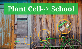 Plant Cell--> School