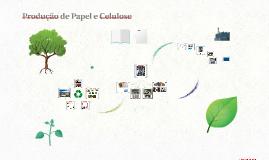 Produção de Papel e Celulose