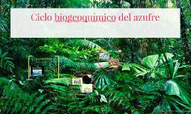 - ¿Qué es un ciclo biogeoquímico?