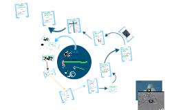 Unit 2: Biochemistry Concept 1 Intro to Life