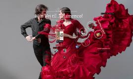 Min vej til Flamenco!!!