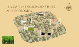 PLAGAS Y ENFERMEDADES VISION AGROECOLOGICA