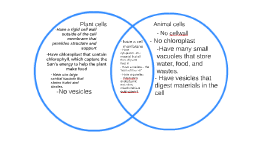 Venn diagram of chloroplasts and mitochondria selol ink venn diagram of chloroplasts and mitochondria ccuart Gallery