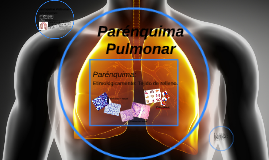 Copy of Parenquima Pulmonar