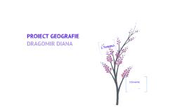 Copy of geografie
