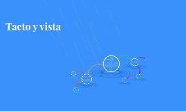 Tacto y Vista