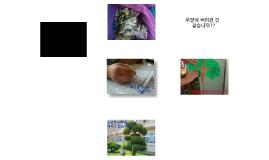 Copy of 나무버리기