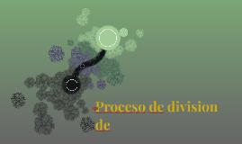 Proceso de division de