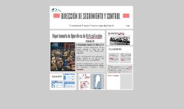 DIRECCIÓN DE SEGUIMIENTO Y CONTROL