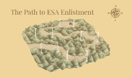 The Path to ESA Enlistment