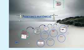 Copy of Copy of POSICIONES ANATÓMICAS CLÍNICAS