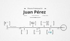 Timeline Prezumé de Andrés Guzmán
