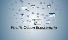Copy of Pacific Ocean Food Web