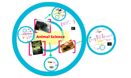 Intro to Ag: Animal Science Unit