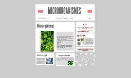 Copia de MICROORGANISMES