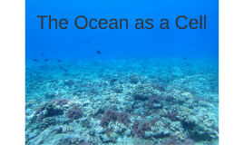 The Ocean as a Cell