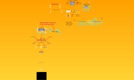 Copy of Copy of Plant Kingdom