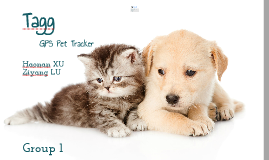 Copy of Tagg pet tracker