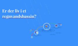 Er der liv i et regnvandsbassin?