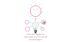 Testicular dysgenisis syndrome