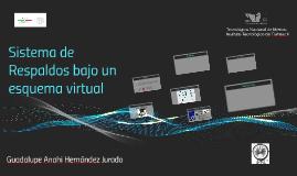 Sistema de Respaldos bajo un esquema virtual