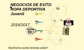 NEGOCIOS DE EXITO