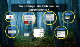 Do Pillbugs Like Fish Food or Strawberries? by Evan Scully, Tobin Buckley, Cole Carter, and Oscar Rodriguez