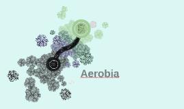 Copy of Aerobia