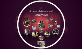 Presentation about Library cats