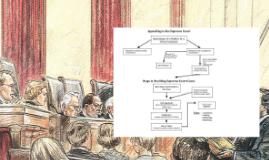 Supreme Court Procedures