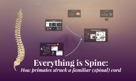 Everything Is Spine