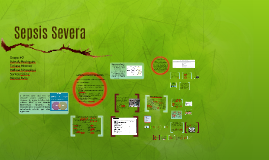 Sepsis Severa