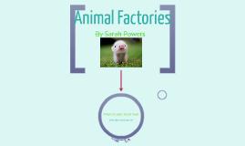 Copy of Animal Factories