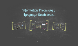 Information Processing & Language Development