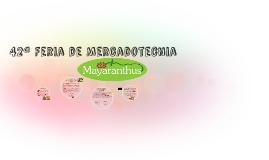 42ª Feria de Mercadotecnia