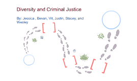 Diversity and Criminal Justice