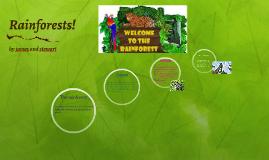 Rainforest james and stewart
