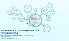 FACTORES EN LA CONFORMACIÓN DE SUBGRUPOS