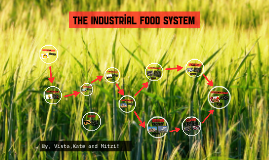 The Industrial Food System