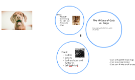The Virtues of Cats vs. Dogs