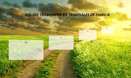 ROL DEL TRABAJADOR EN TRIBUNALES DE FAMILIA